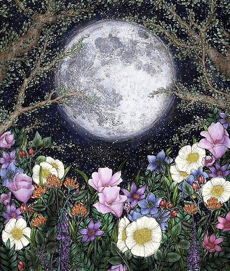 Mitternacht im Garten II von ECMazur