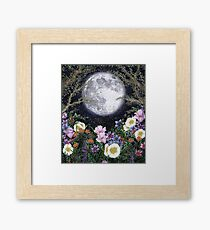Midnight in the Garden II Framed Print