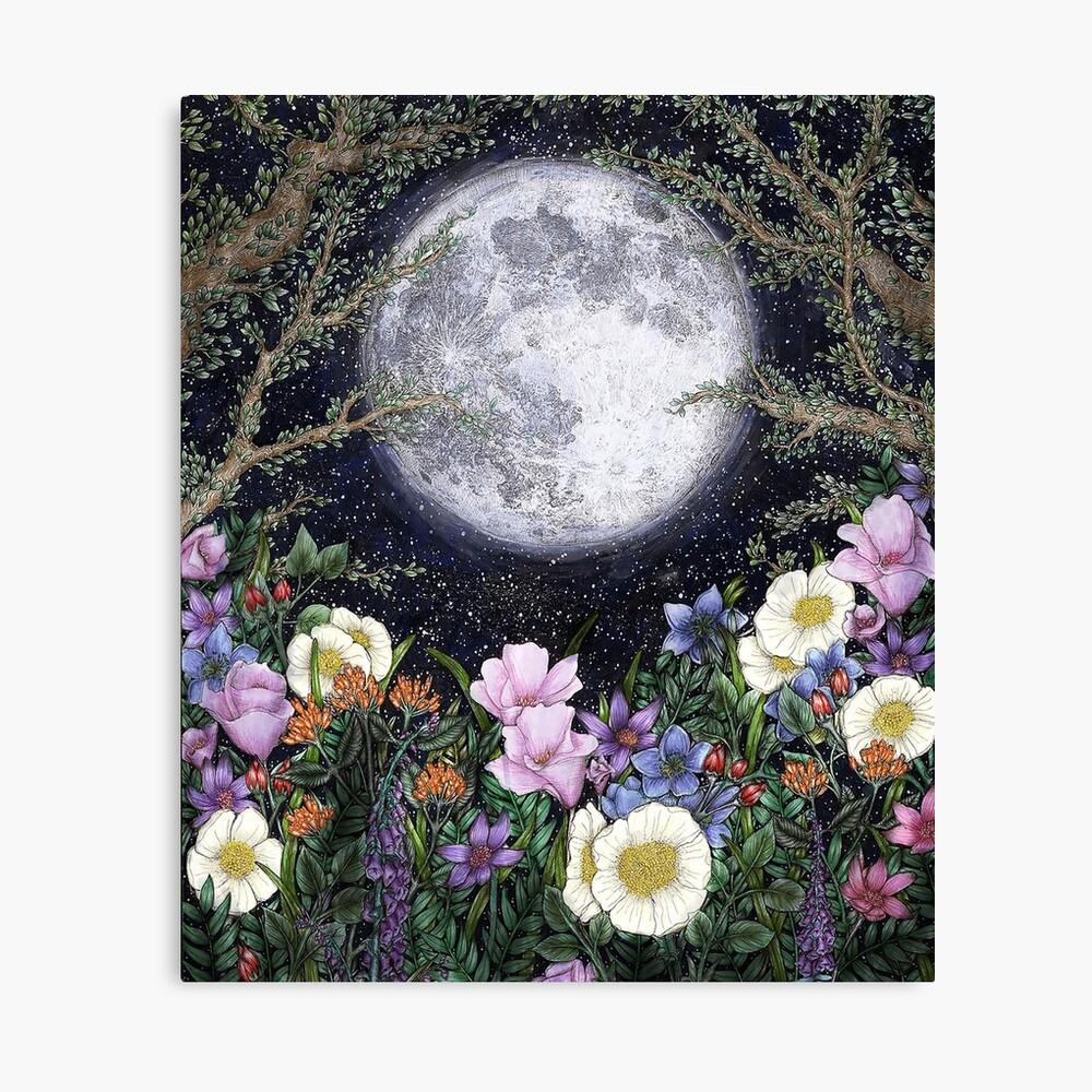 Midnight in the Garden II Canvas Print