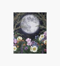Midnight in the Garden II Art Board Print