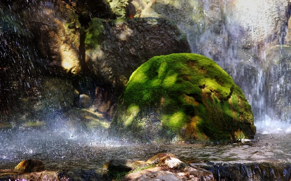 ~ Splash! ~ by Nadya Johnson