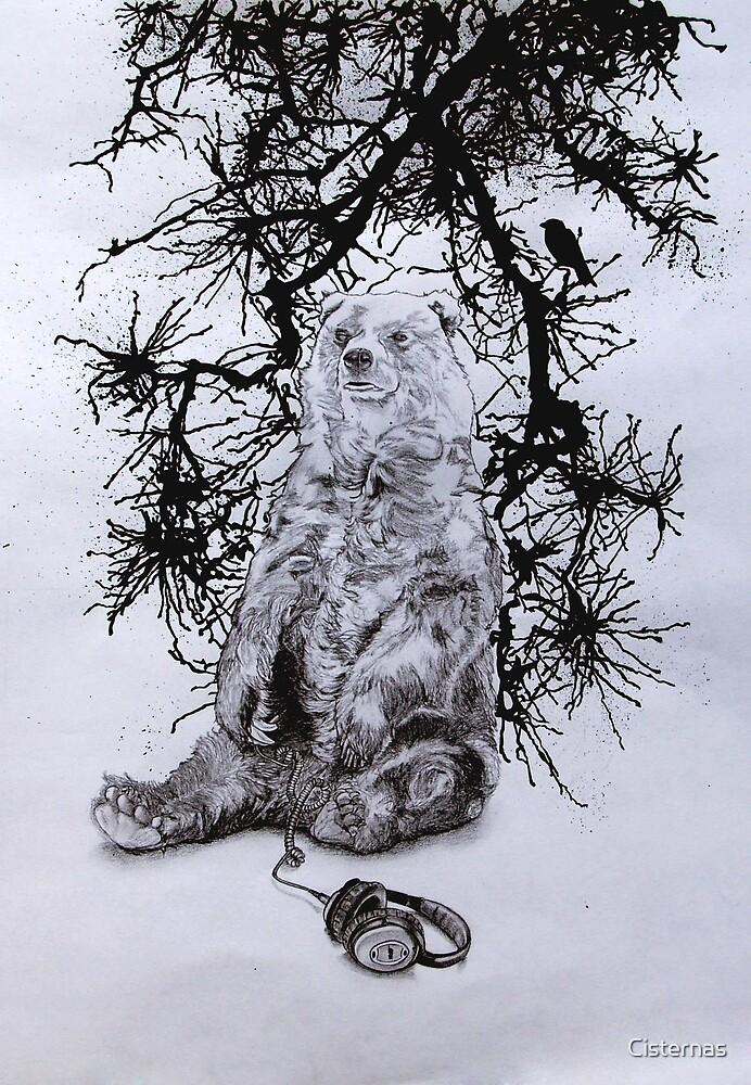 Bear by Cisternas