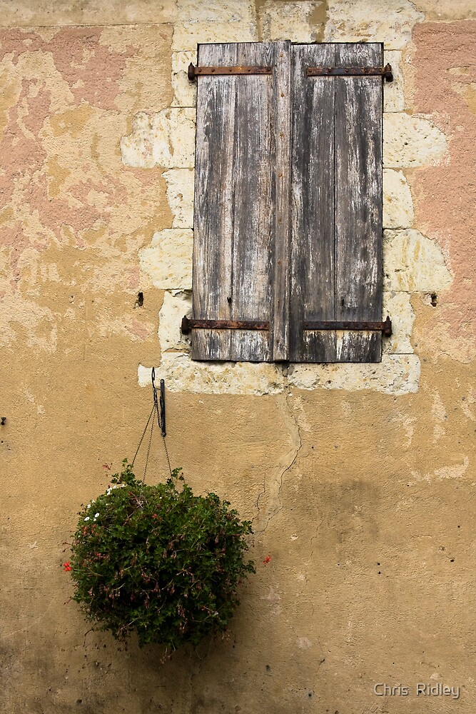 Hanging basket and aged shutters by Chris  Ridley
