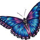 Dream Butterfly by rubywhiteart