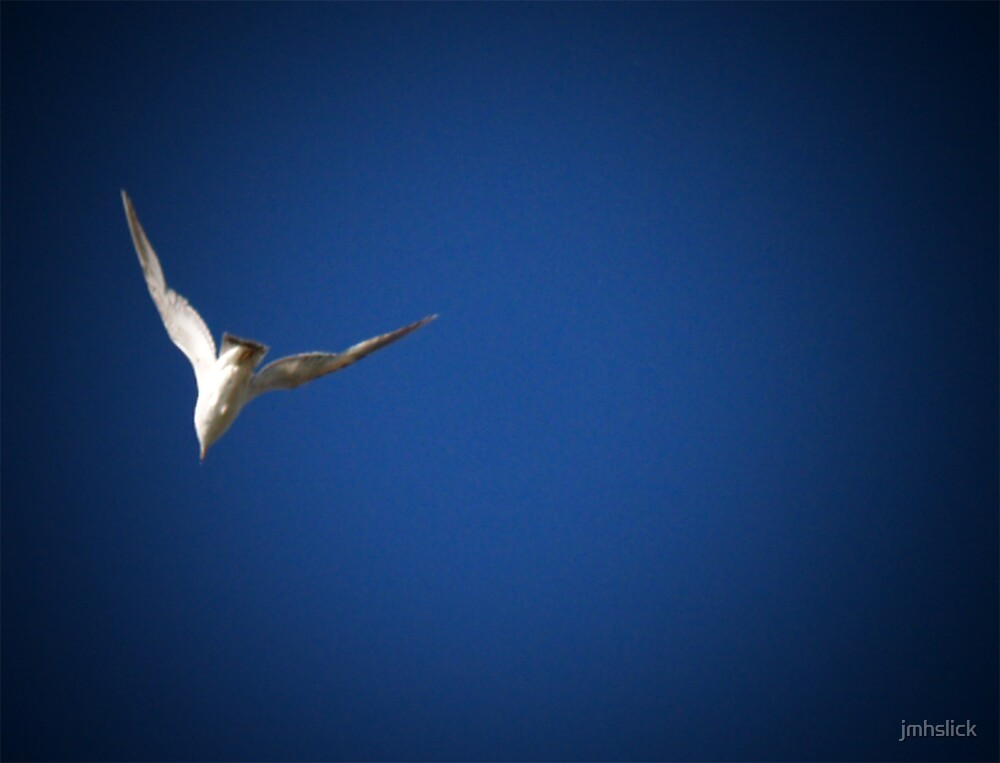 Fly Blue by jmhslick