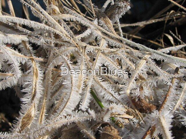 Ice Feathers by DeaconBlues