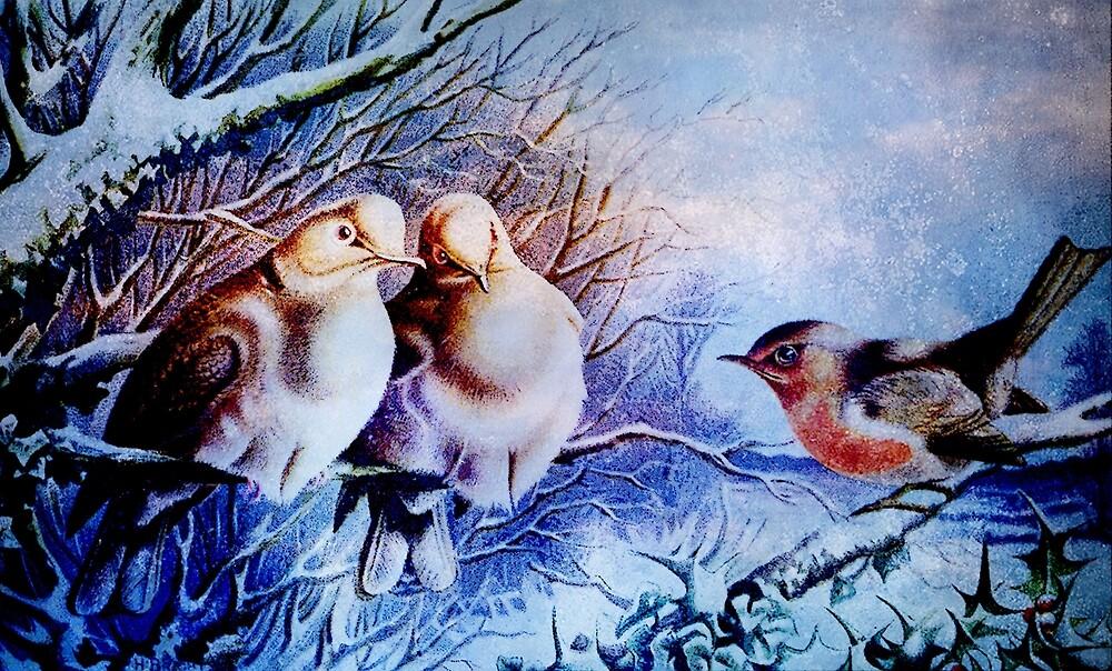 SNOW BIRDS by Tammera