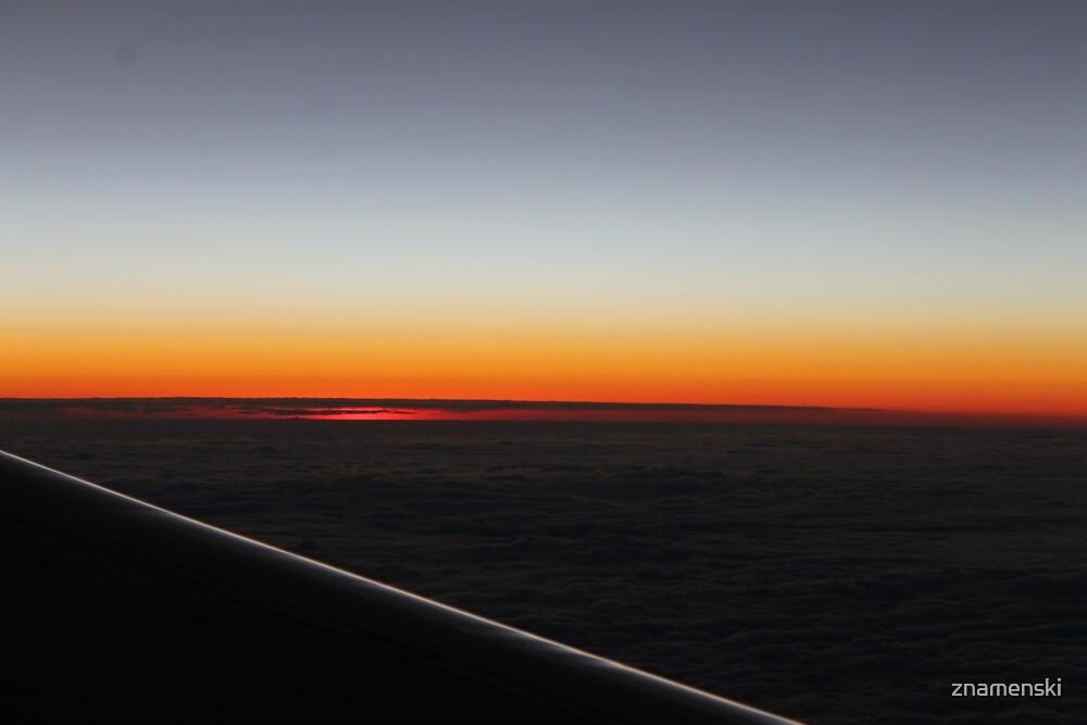 Setting sun, evening dawn, pink clouds, side, plane by znamenski
