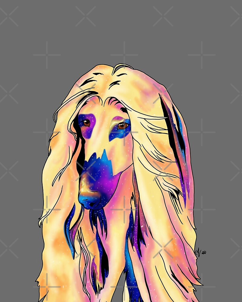 Inner Galaxy Afghan Hound by AthenaVictoria