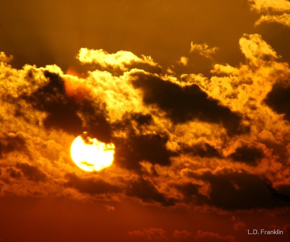 Golden Clouds by L.D. Franklin