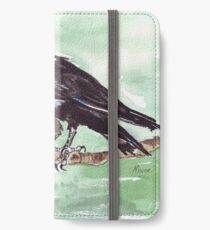 Domino, the Pied Crow (Corvus albus) iPhone Wallet/Case/Skin