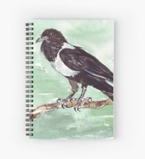 Domino, the Pied Crow (Corvus albus) Spiral Notebook