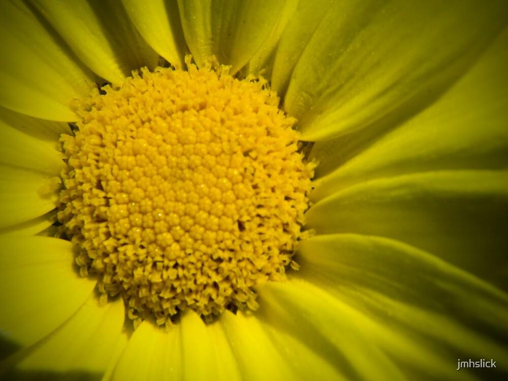 Sunshine by jmhslick