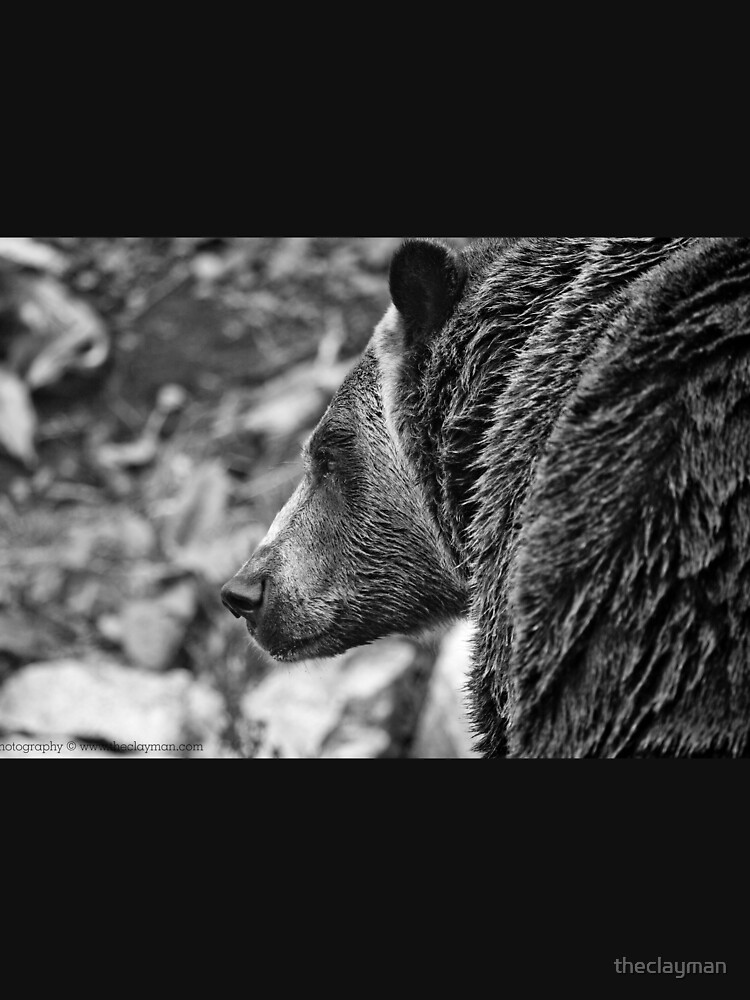 Grizzly Profile by theclayman