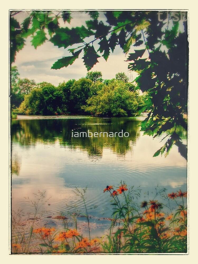 McKinley Park: Chi Nostalgic by iambernardo