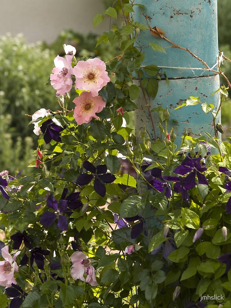 Garden Grove by jmhslick