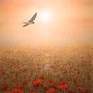 Peaceful Dawn by Dawnsky2
