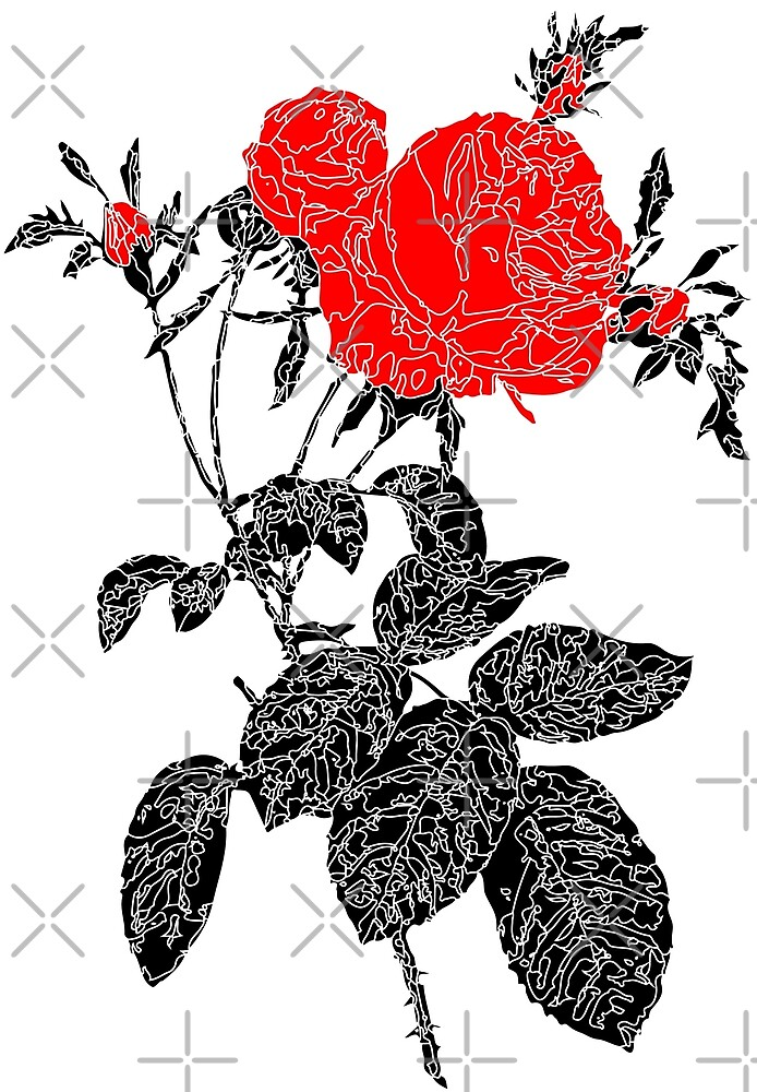 Black and White Red Roses by Pablo Mendoza