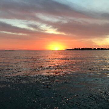 Puerto Vallarta Mexico Vacation  by pda5005