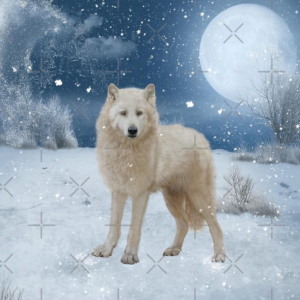 Awesome arctic wolf in the night by nicky2342