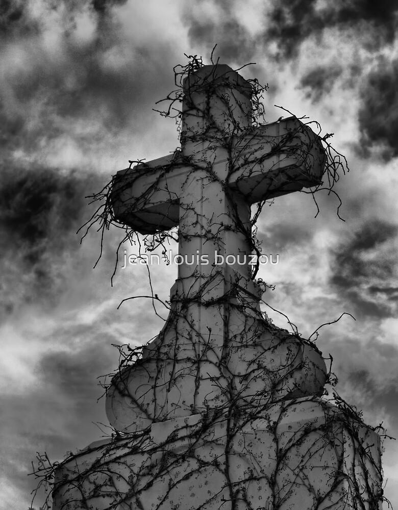 The cross by jean-louis bouzou