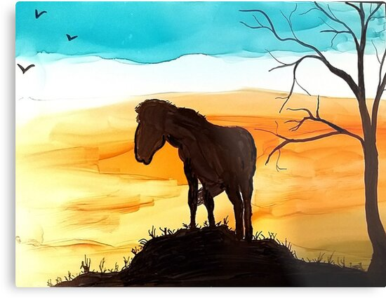 horse silhouette at sunset by Marcella Chapman