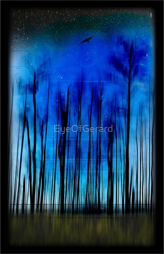 Nite Flite by EyeOfGerard