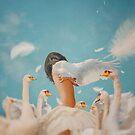 Ugly Duckling by Katrina Yu