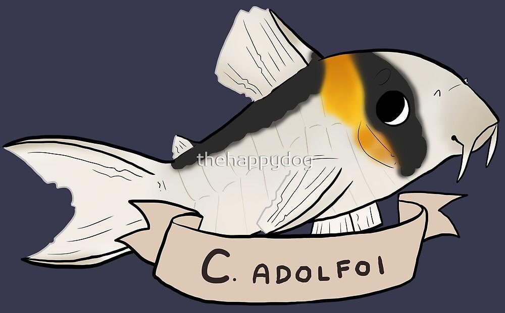 Corydoras adolfoi by Pinto Sketches