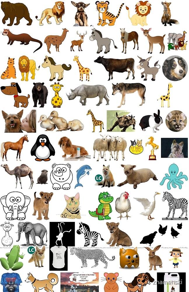 Animals by znamenski