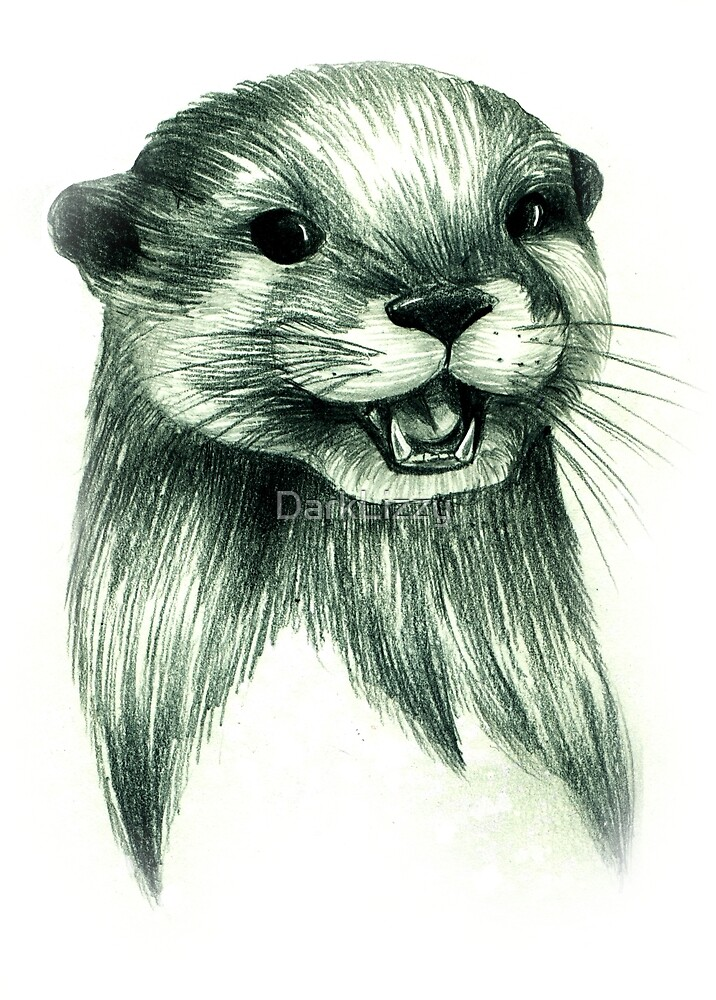 otter pencil drawing by DarkLizzy