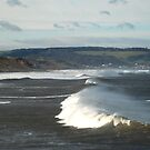 Whitby Wave by dougie1