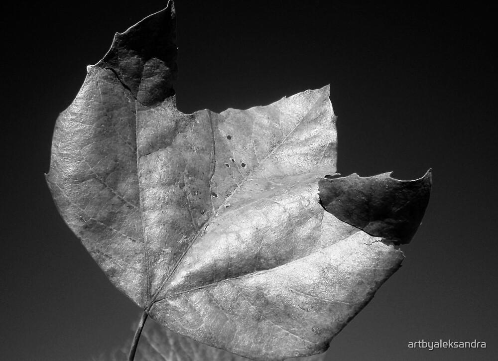 Leaf IV by artbyaleksandra