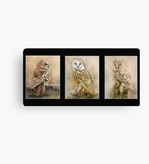 British Owls Canvas Print