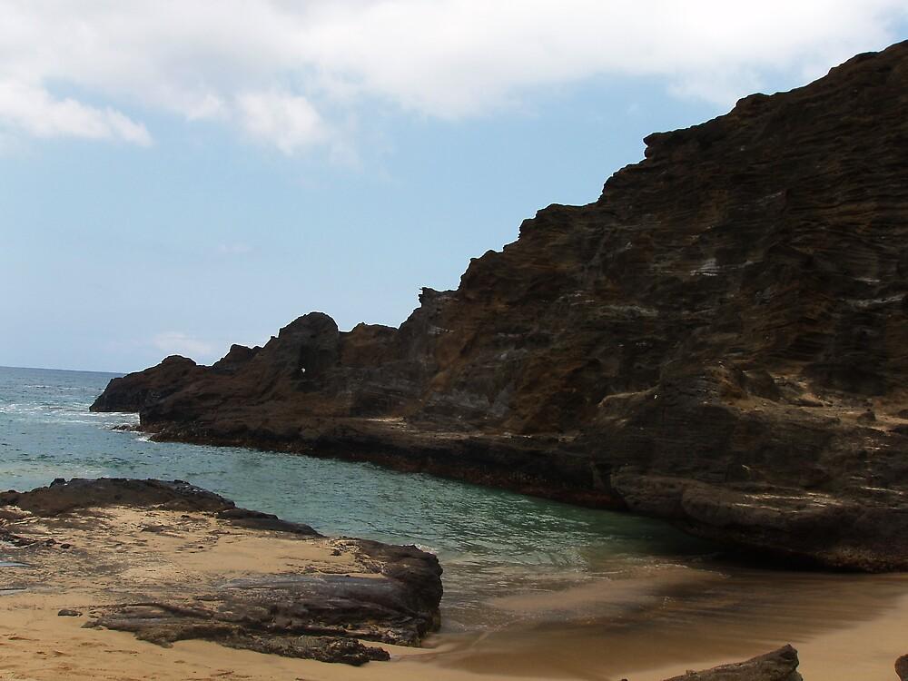 Hawaii by Danina Calame