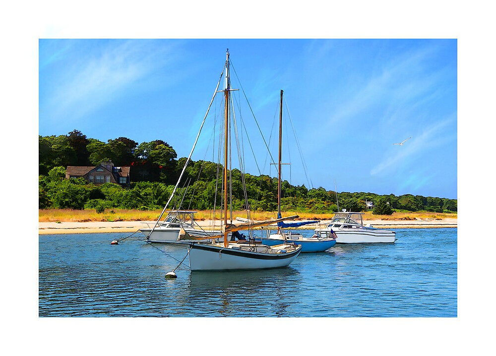 Vineyard Haven by Michael  Petrizzo