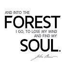 find my soul - john muir by razvandrc
