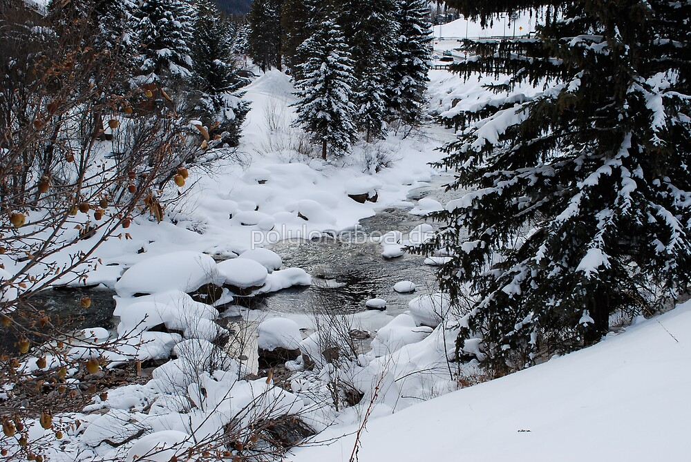 Creek in the Middle of Winter by polylongboarder