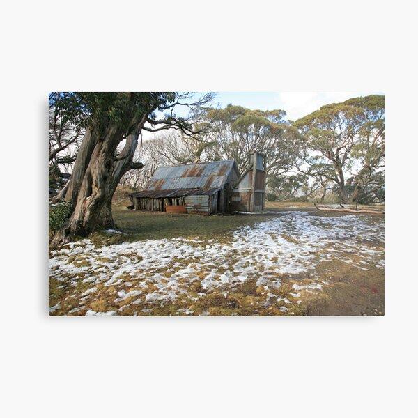 Wallace Hut, Falls Creek, Australia Metal Print