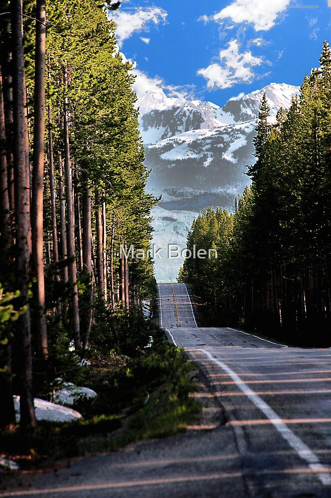 Road to Tetons by Mark Bolen