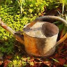 The Old Watering Can by jean-louis bouzou