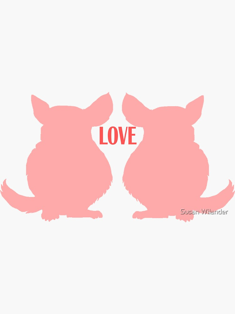 Chinchilla Love by susanw