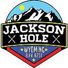 JACKSON HOLE WYOMING Mountain Skiing Ski Snowboard Snowboarding by MyHandmadeSigns