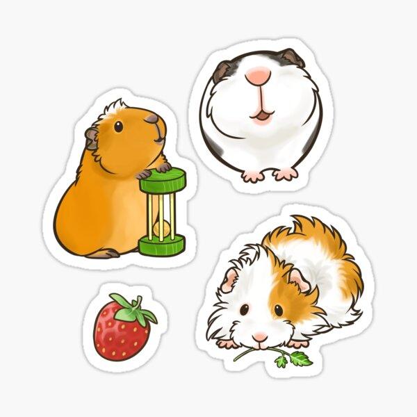 Guinea Pig set 1 Sticker