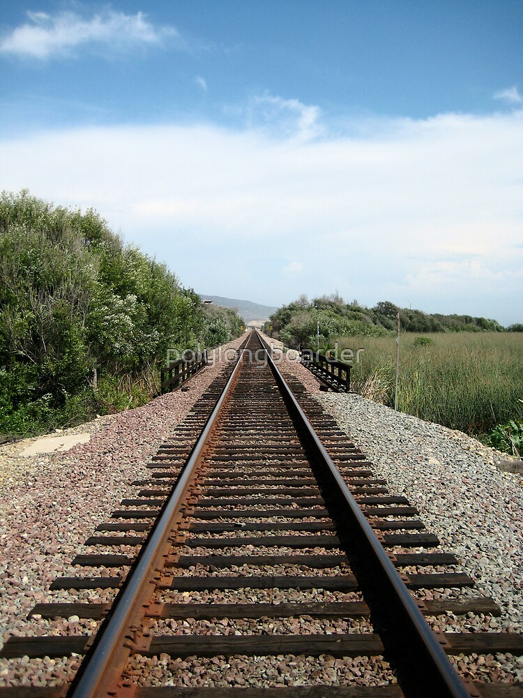 Rail-Road tracks at the Beach by polylongboarder