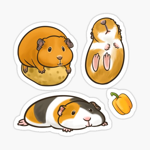 Guinea Pig set 2 Sticker