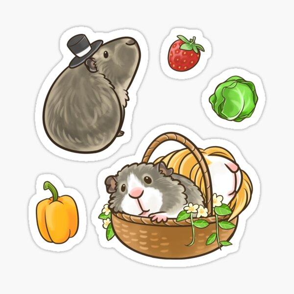 Guinea Pig set 4 Sticker