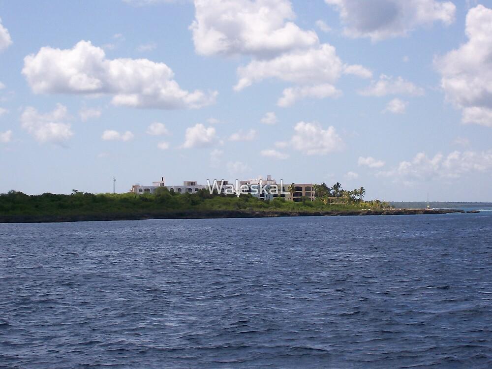 Island Castle by WaleskaL
