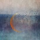The golden moon and the birds by Priska Wettstein
