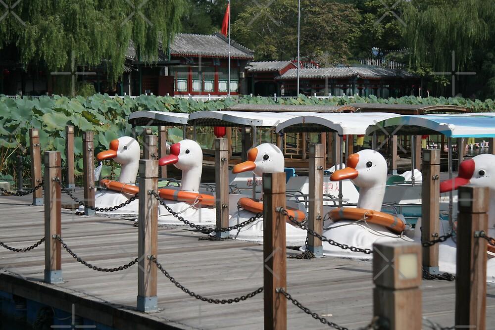 Just Ducky by KLiu